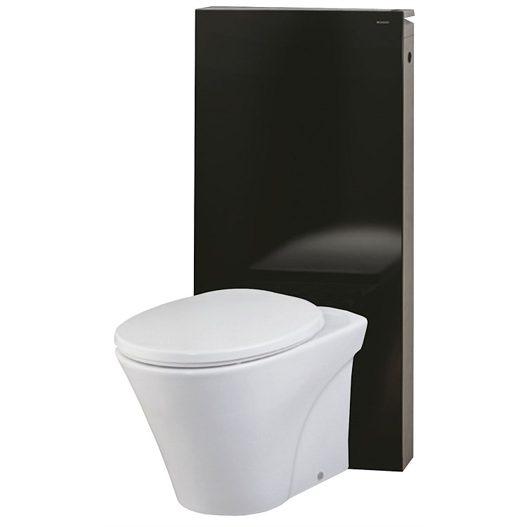 Toto Santa Maria Wall-Faced Pan and Geberit Monolith